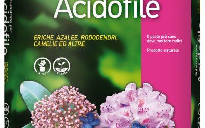 Terriccio per piante acidofile
