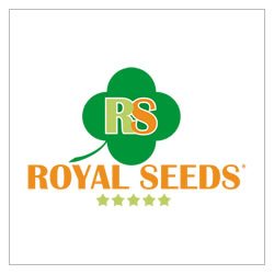 royalseeds-marchio-sementi