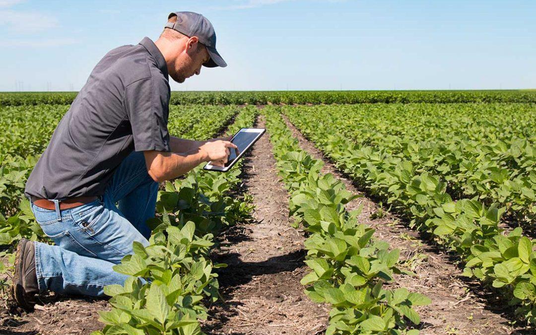 servizio assistenza tecnica agricola
