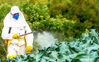 Maschere, filtri e tute per trattamenti fitosanitari